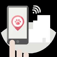 Application pour chiens